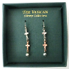Silver and Gold Vatican Library Earrings